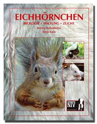 eichhoernchen-titel2
